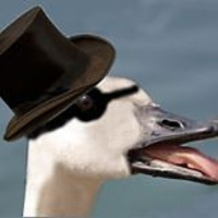 User image: Goose