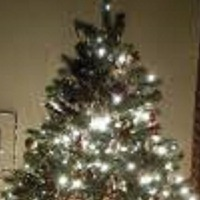 User image: christmas tree