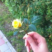 User image: Georgiana